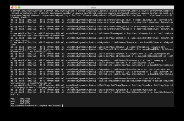 screenshot_skynet_terminal